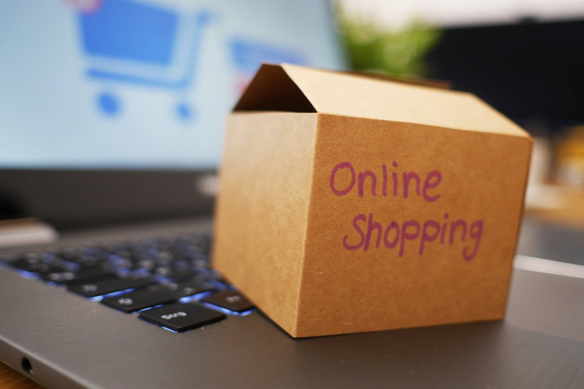 Achieving Last Mile E-Commerce Delivery Success